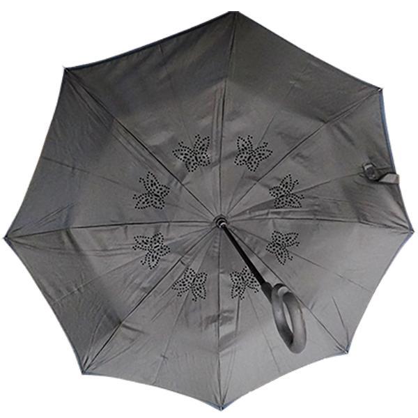 פנים המטריה